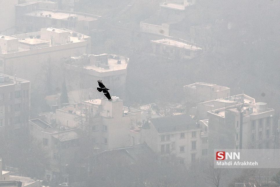هوای تهران در مرز آلودگی